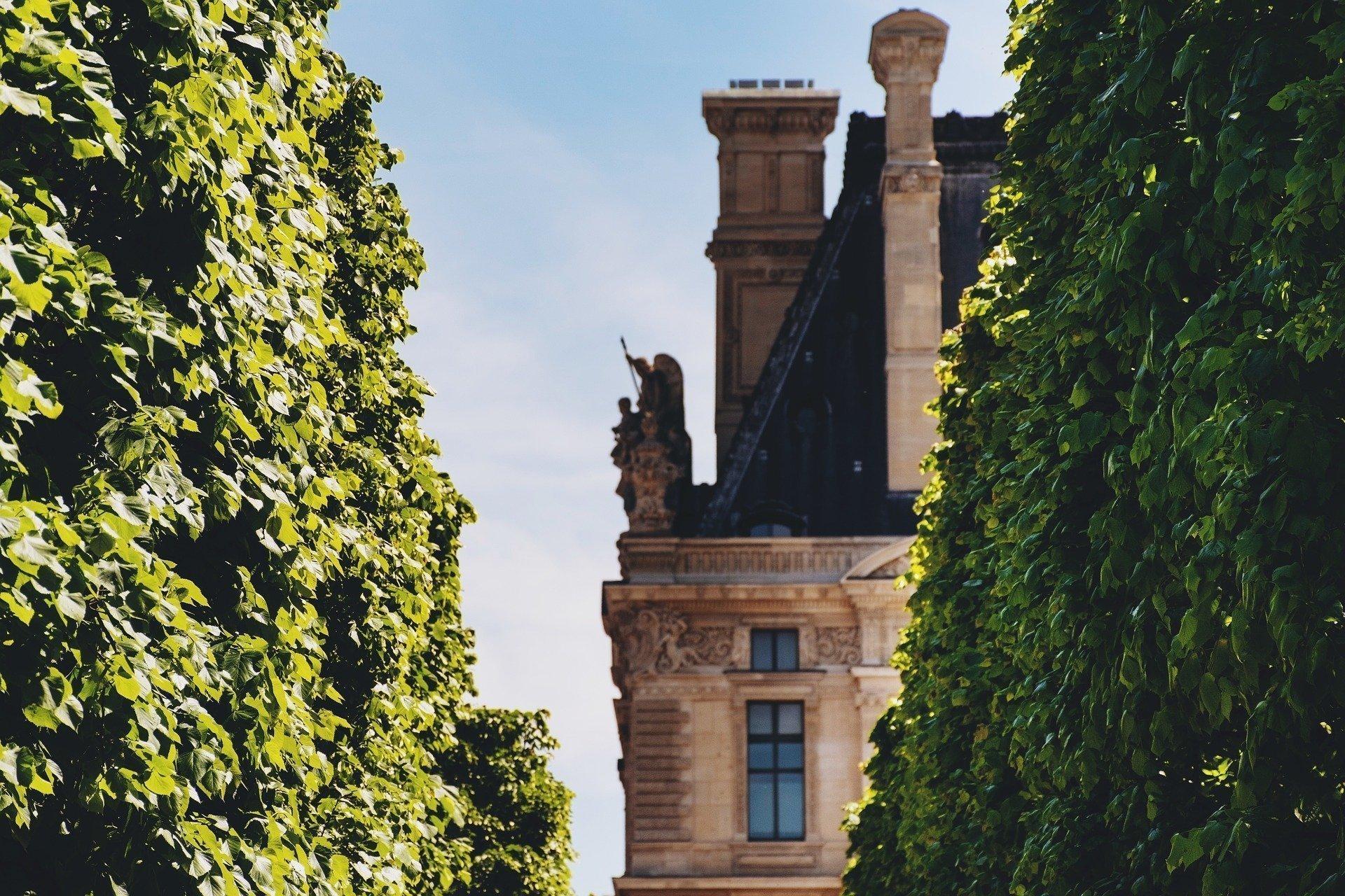 Tuileries Gardens hedges