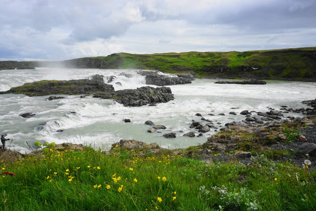 Discover the beauty of Iceland's South Coast! Whether you take an Iceland South Coast Tour or self-drive, explore everything you need to know.