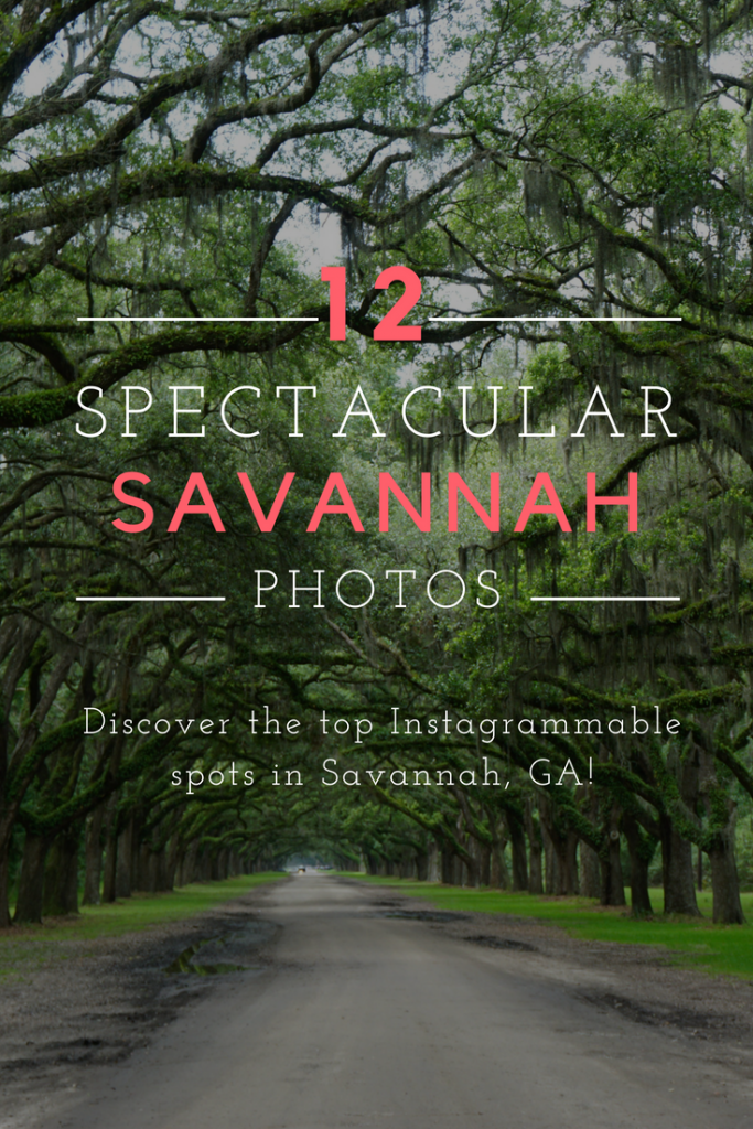 Discover the top photo spots in Savannah, GA (USA)! Don't miss these top Instagram places in Savannah. #travel #savannah #georgia #forsythpark #wormsloe